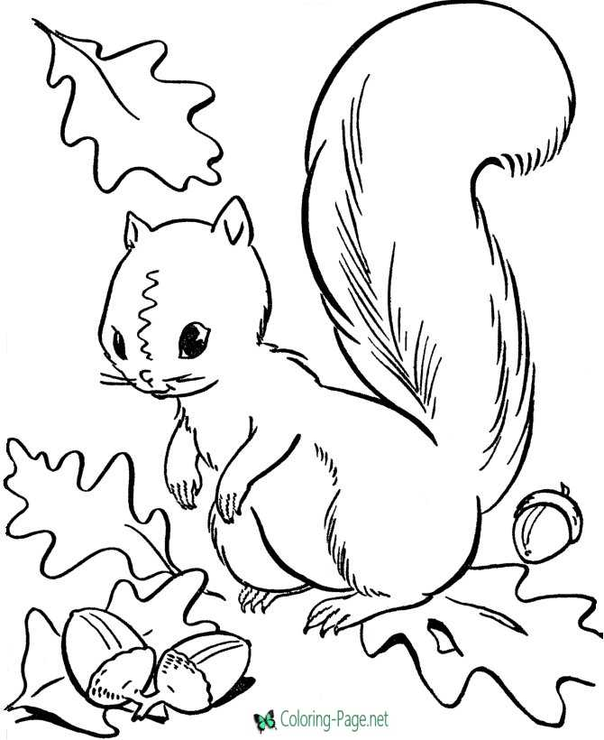 autumn coloring page to print