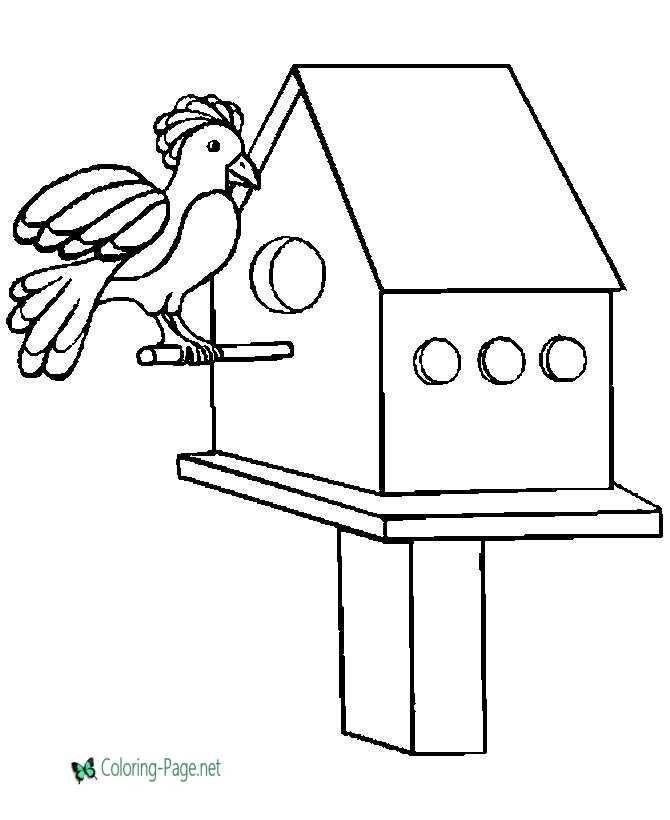 Bird House - Bird Coloring Pages