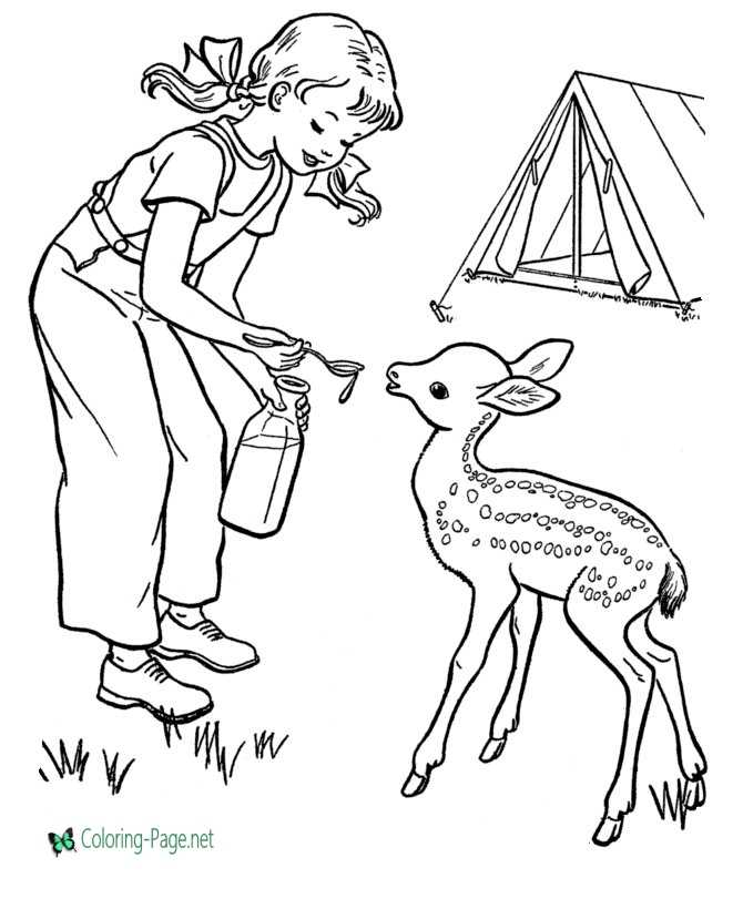 Feeding Deer Camping Coloring Pages