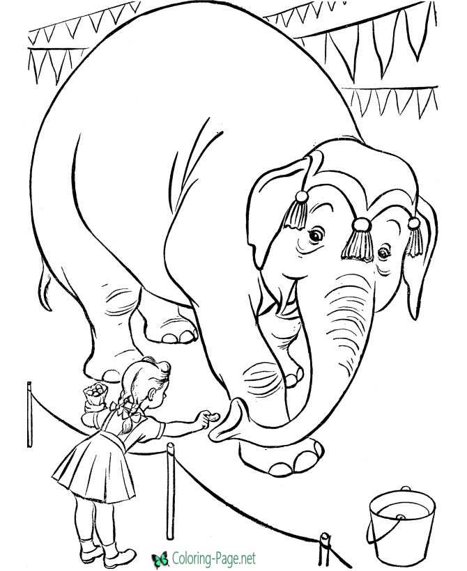 Elephant Circus Coloring Pages