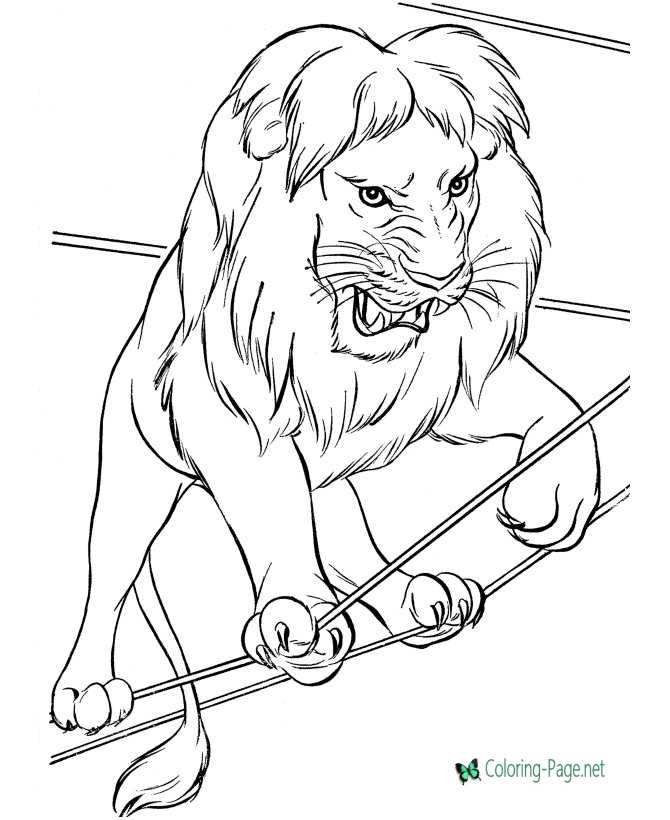 circus coloring page for children