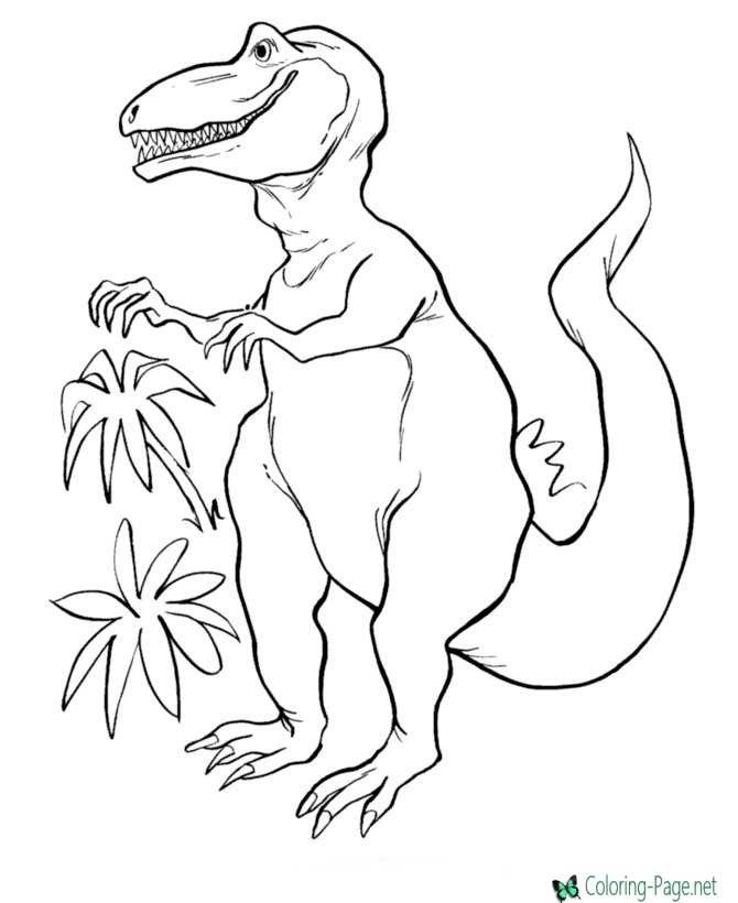 dinosaur coloring picture