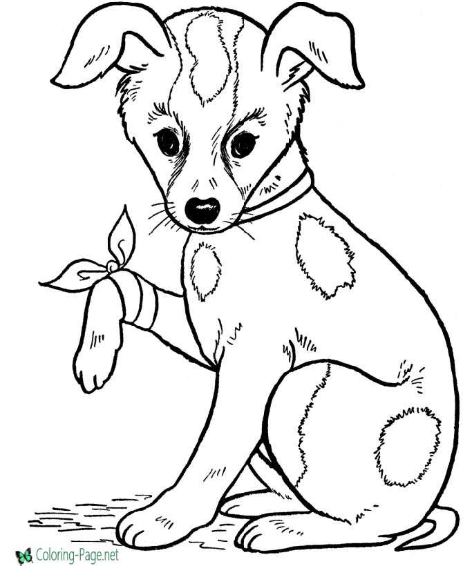 picture about Dog Coloring Pages Printable named Puppy Coloring Webpages