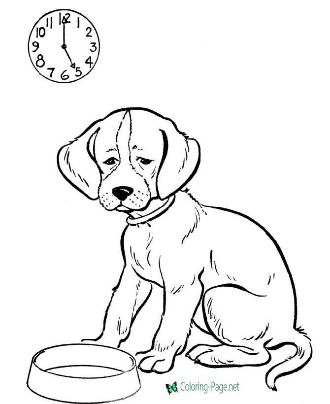 Dog Coloring Pages