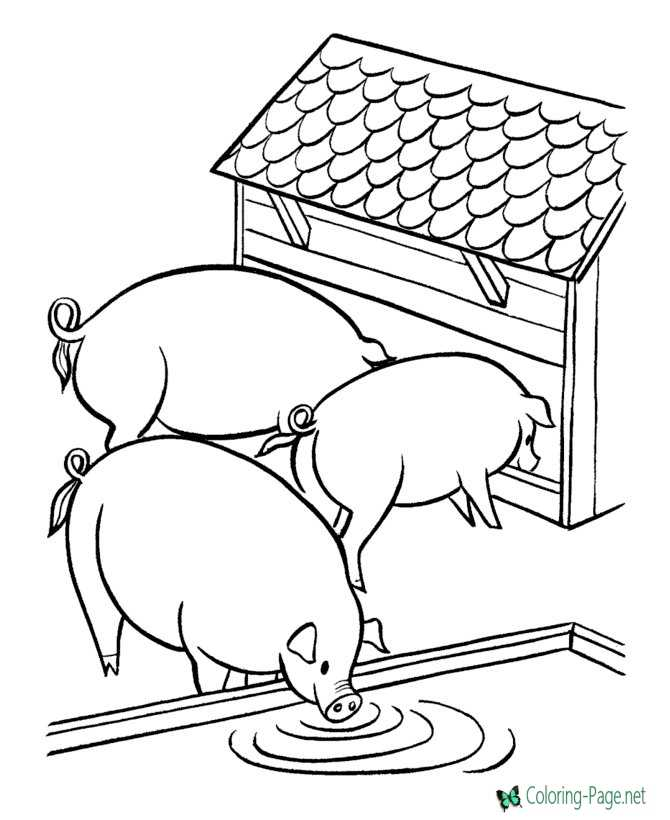 Farm Coloring Pages Three Pigs