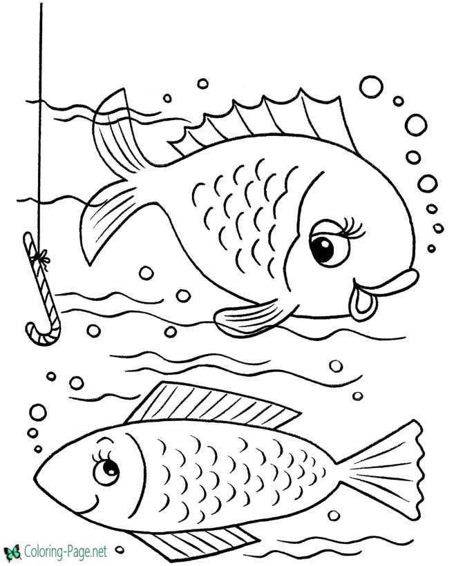 fish picture to print