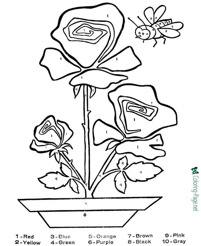 Color by Number Flower Coloring Pages