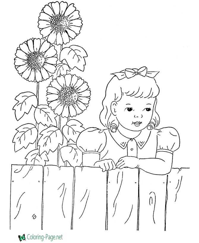 Flower Coloring Pages Sun Flowers