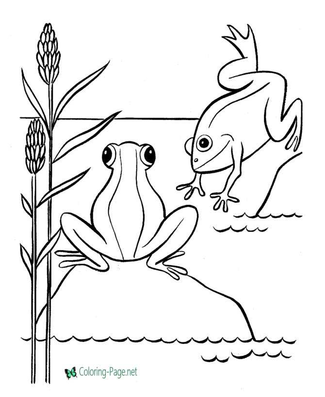 kids frog coloring page