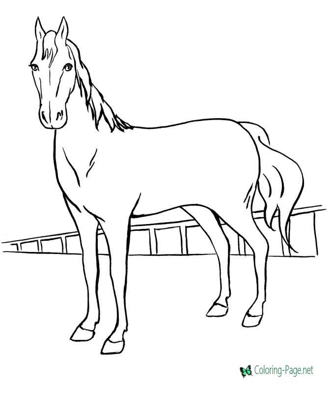 horse coloring pages - Printable Coloring For Kids
