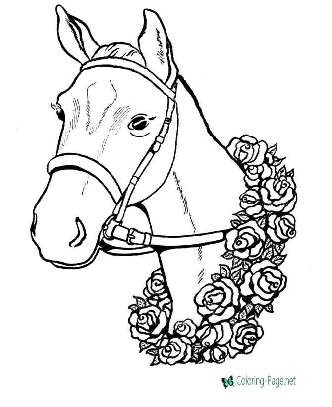 winner horse page to color