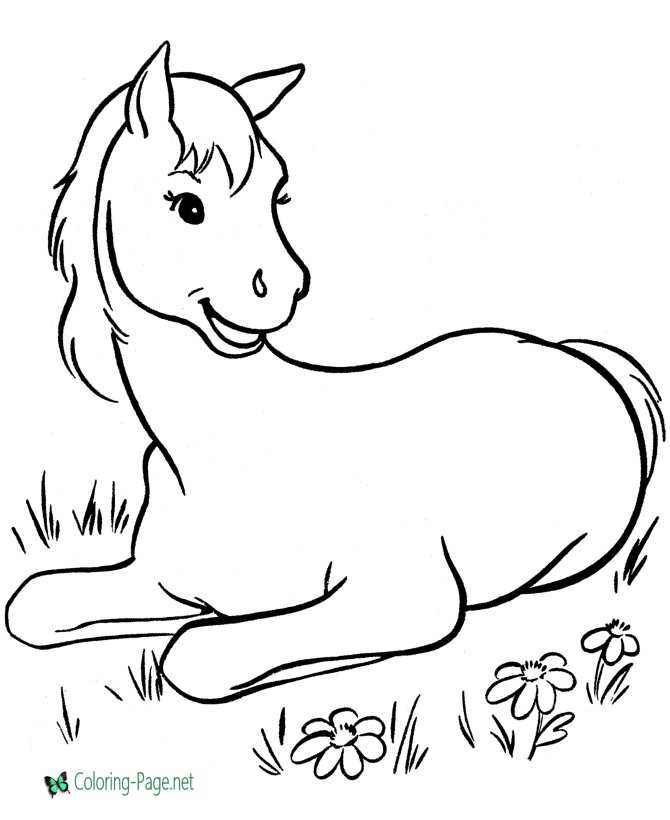image about Horse Coloring Pages Printable named Horse coloring web pages in direction of print