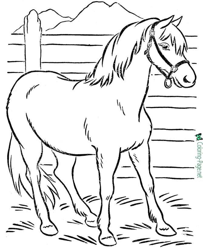 Farm Horse Coloring Pages