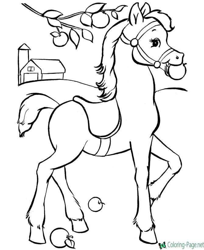 Horse Coloring Pages Apple Treat