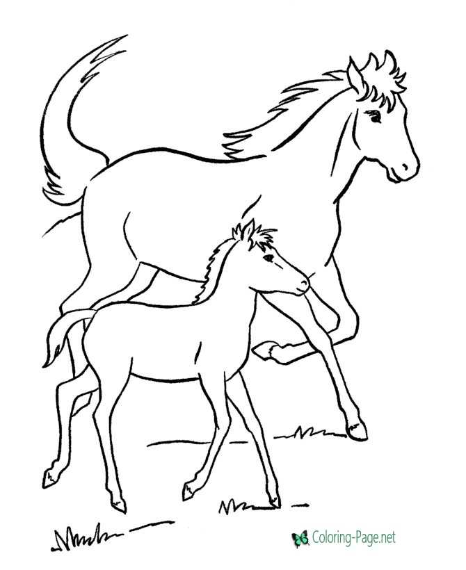 mare and colt coloring page