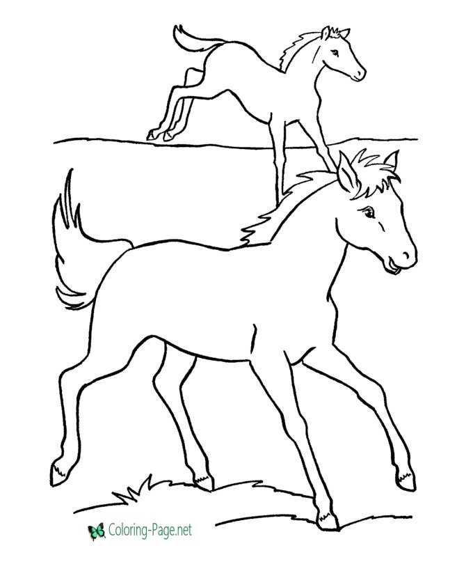 Horse Coloring Pages Running Horses