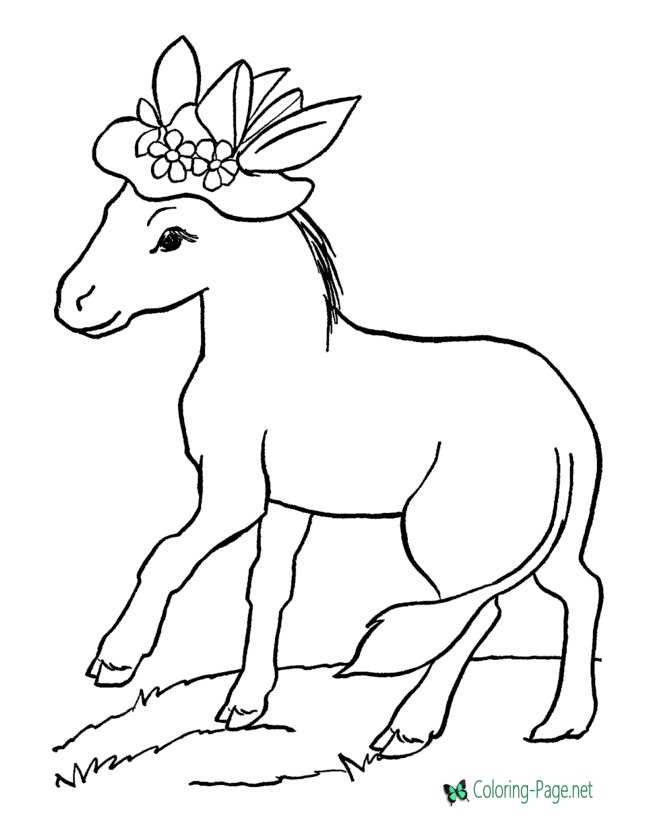 Horse Coloring Pages Donkey Hat