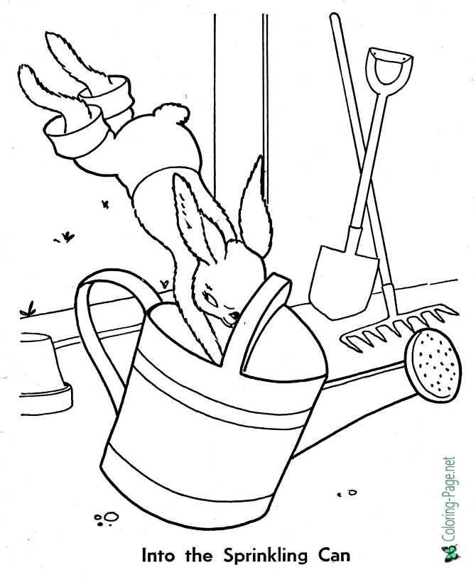 peter rabbit coloring page for children