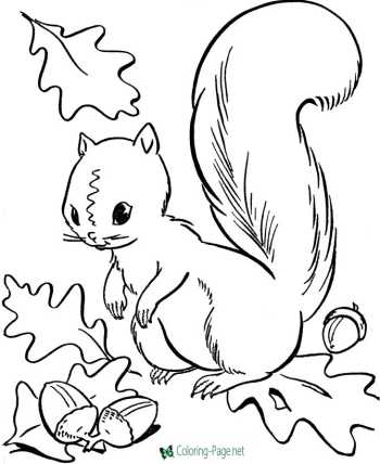 autumn thanksgiving coloring pages