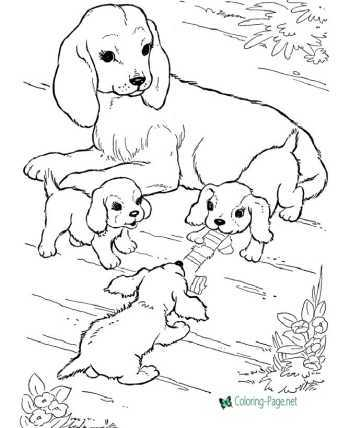 Animal coloring pages of Dogs