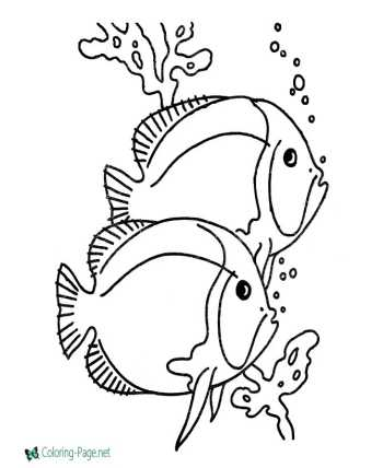 Fish - nature coloring pages