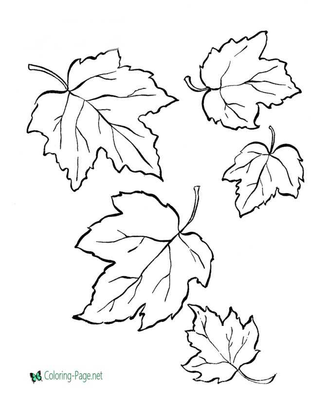 image relating to Leaves Coloring Pages Printable identified as Tree Leaves Coloring Web pages