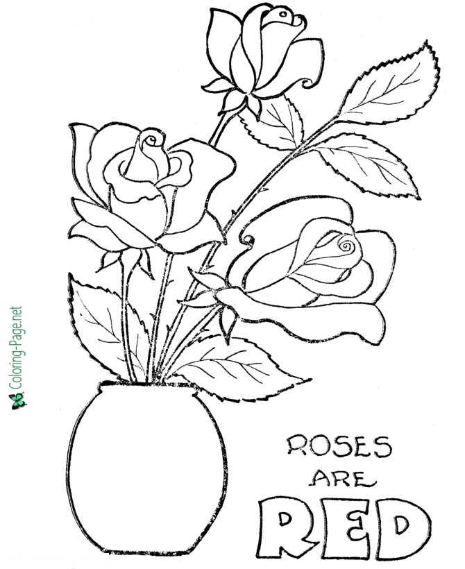 Roses are Red Valentine´s Day Coloring Pages