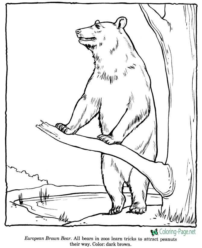 - Zoo Coloring Pages
